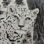 Jaguar (schwarz-weiß)